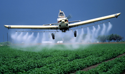 Agriculture Crop duster Cotton Pesticide Photography