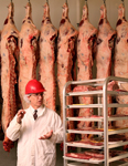 Industrial Photography Agriculture Food Meat Inspection Processing