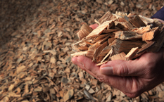 Wood Chips Alternative Fuel